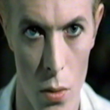 BowieTribute-Numbers_0000_DVD 1